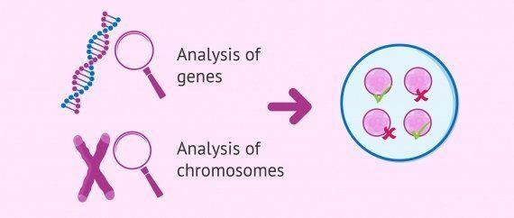 Preimplantasyon Genetik Tarama nasıl çalışır?